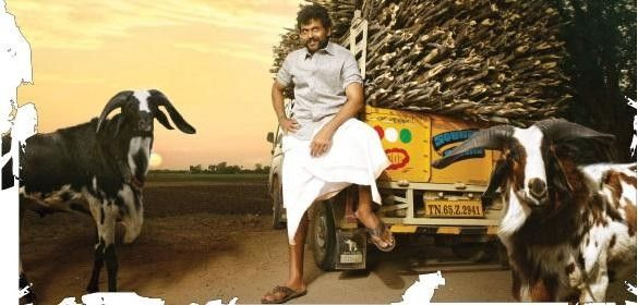 actor karthi new look photos from his upcoming komban tamil movie