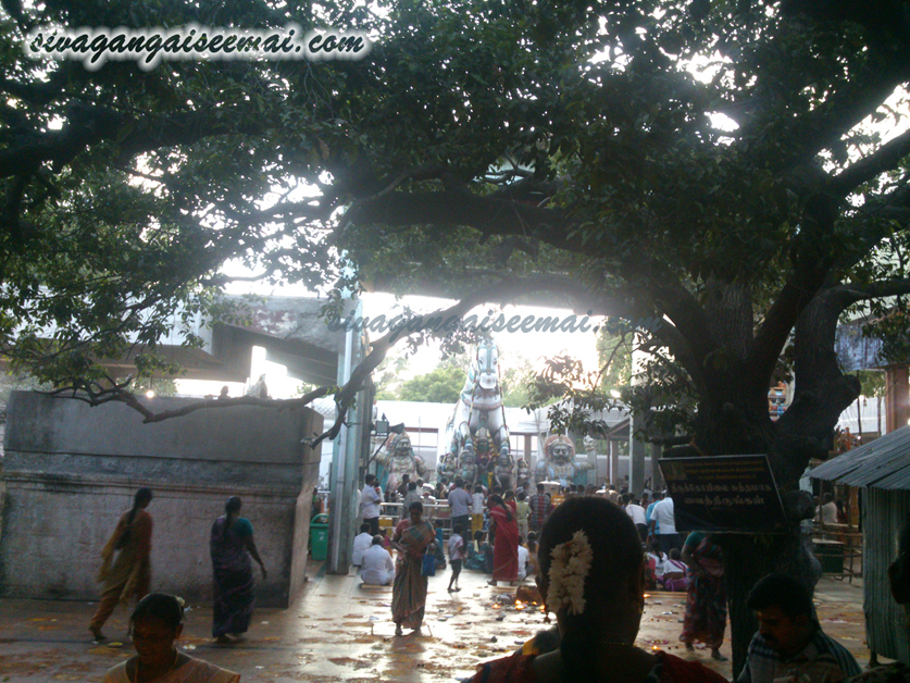 Madappuram Kali Temple Bus Route and Pooja Timings
