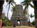 sivaganga city temple photographs